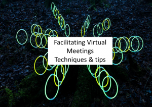 Facilitating on-line meetings - Tips and Techniques
